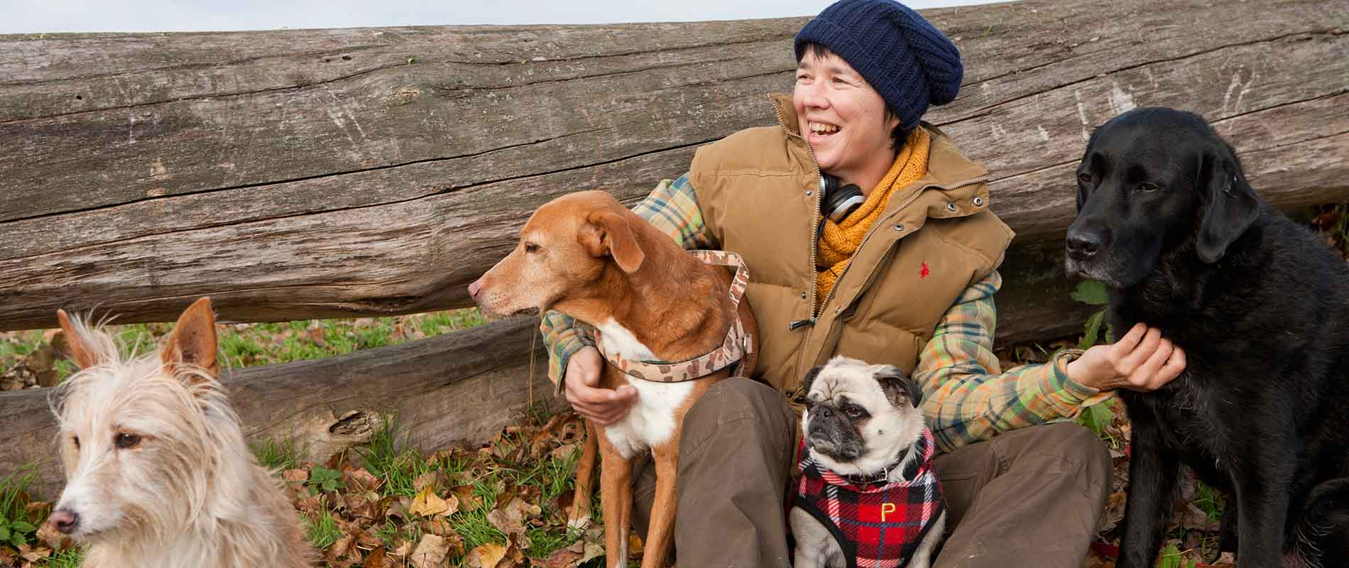 Karen Fleming und Hunde